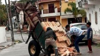 Un caballo quedó colgado en el aire por exceso de peso en el carro que tiraba
