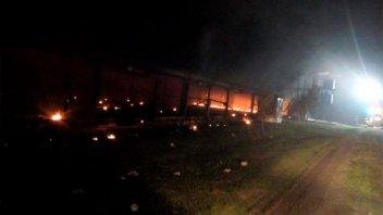 Murieron unos 13.000 pollos tras incendiarse un criadero
