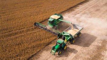 Afirman que el valor bruto de producción de granos sería de US$ 30 mil millones