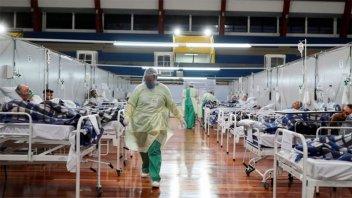 El Hongo Candida Auris avanza dentro de salas con pacientes con covid en Brasil
