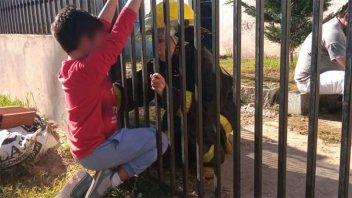 Niño atrapado en una reja, bombera lo contuvo y luego lo rescataron