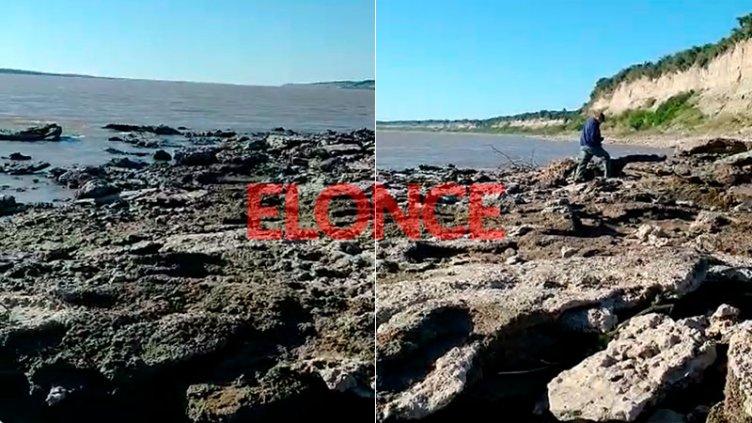 Impresionante video: pescadores caminaron diez metros sobre la