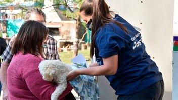 Habrá vacunación antirrábica gratuita en barrios Los Arenales y Toma Nueva