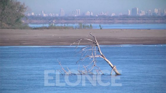 Raigones, bancos de arena y retirada de peces: el río, en 30cm por debajo del 0