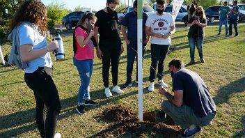 Se plantaron árboles nativos en la zona costera de Colón por el Día del Árbol