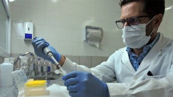 No detectaron casos de cepa Delta en Gualeguaychú: qué variantes predominan