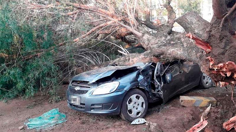 Un árbol cayó sobre su auto y estuvo atrapado más de dos horas.
