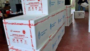 Llegaron casi 60 mil vacunas a Entre Ríos y se sumaron dos nuevas marcas