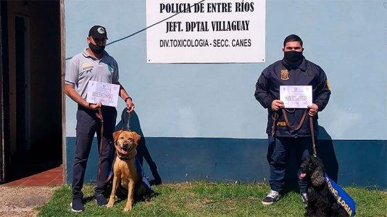Dos canes antinarcóticos finalizan su labor en la policía entrerriana