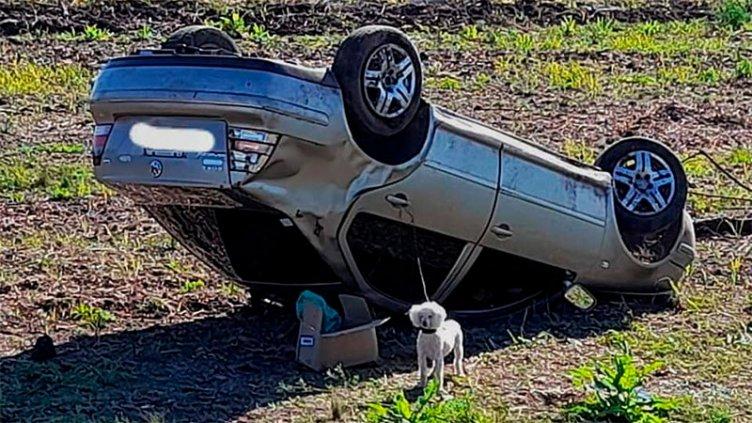 Dos personas fueron hospitalizadas tras tremendo vuelco en Ruta 12