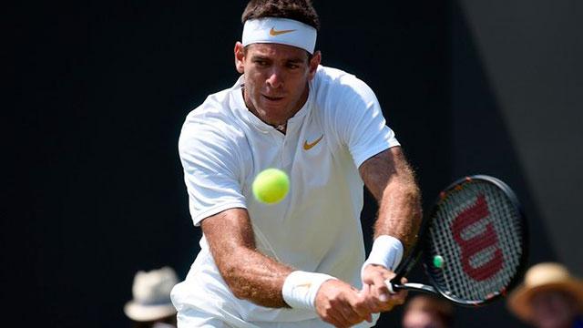 Del Potro sigue derechito en el ATP 250 que se disputa en Los Cabos.