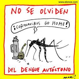 Aedes es local